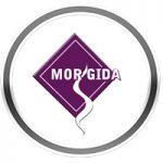 morgida
